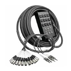 Audio Snake - 12 Microphone Channels - 100 Ft