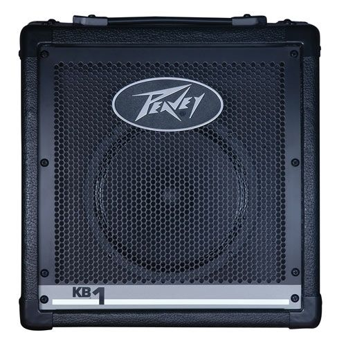 Peavey 2 Channel Keyboard Amplifier