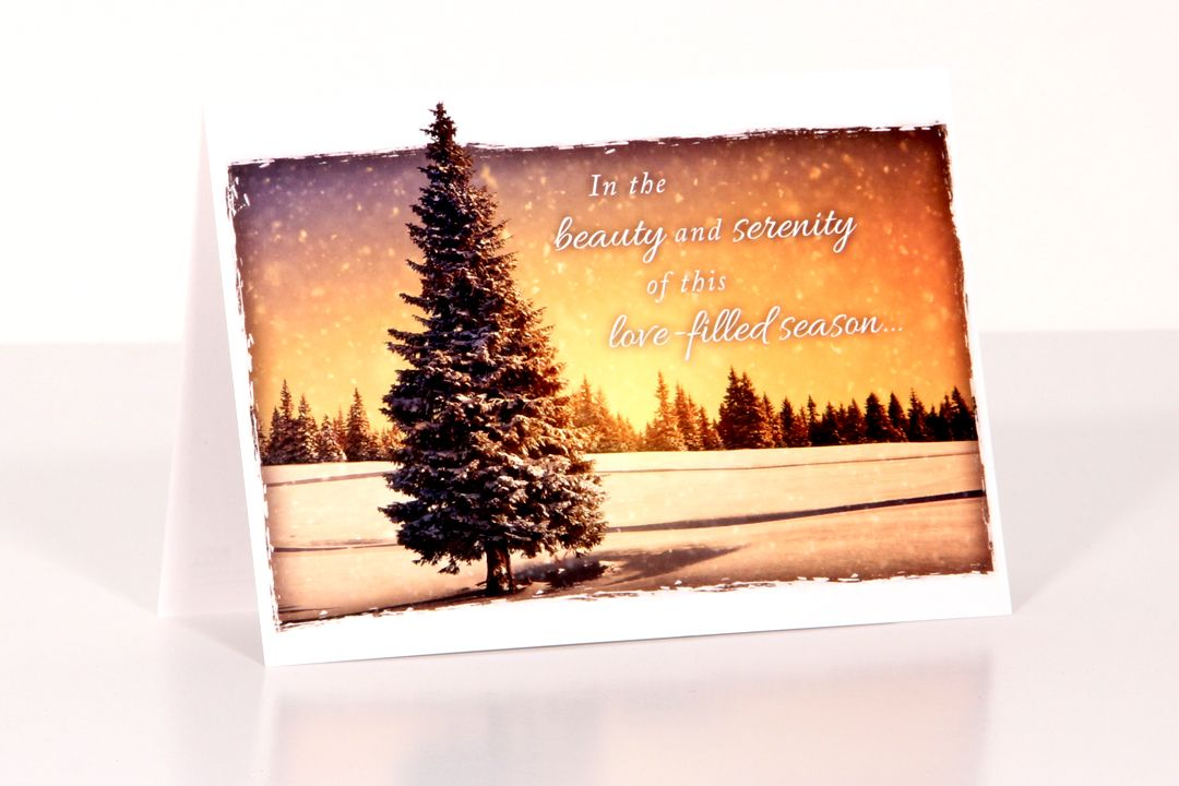 Perfect Peace Christmas Cards - Box of 12 Cards with Envelopes