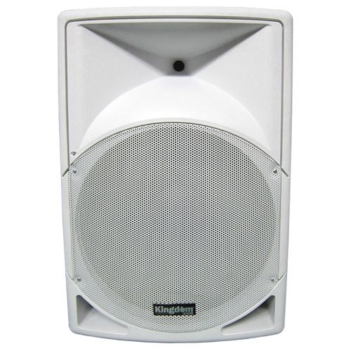 Kingdom Versa Pro Loud Speaker Monitor - 15 Inch - White