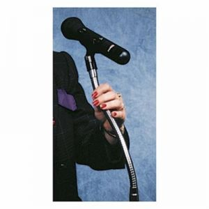 Gooseneck Microphone Positioning Tube - 13 Inches